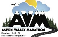 2012-avm-logo-color-eps